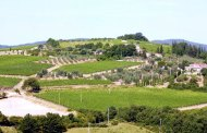 Baricci e il suo Rosso di Montalcino 2015