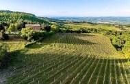 Montalcino: la coraggiosa biodinamica della Piombaia