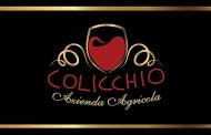 L'enoteca Vignaioli Naturali a Roma ospiterà Marco Colicchio e i suoi vini dei Castelli Romani
