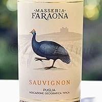 Sauvignon 2016 Masseria Faraona
