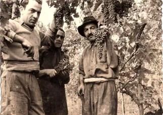 Leopoldo Milanesi, Tecla Giorgi e Antonio Milanesi nel 1950