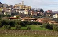Tornano due importanti concorsi enologici organizzati dal Comune di Cavaion Veronese, dedicati al Bardolino