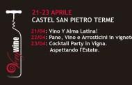 Dalfiume Villa Poggiolo, a Castel San Pietro Terme l'eleganza firma lo stile
