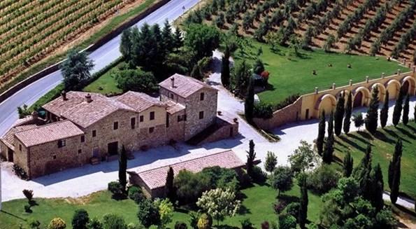 Azienda Solaria di Patrizia Cencioni
