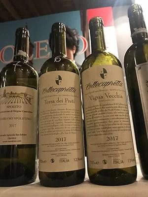 Vini Collecapretta