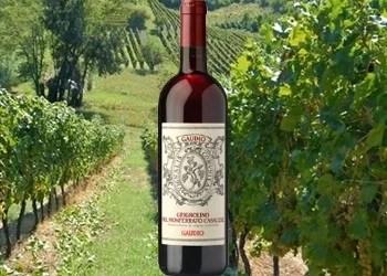 """Grignolino del Monferrato Casalese """"Gaudio"""""""