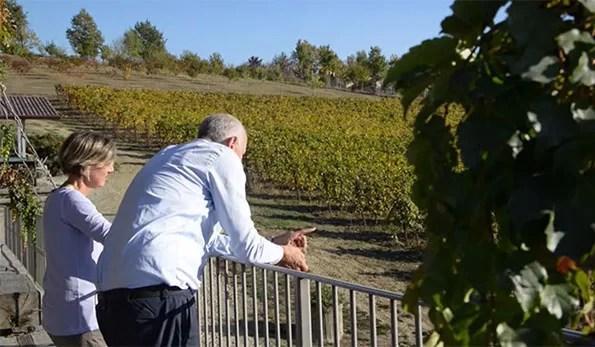 VINerdì IGP, il vino della settimana: Rosso di Rosso Cascina Faletta