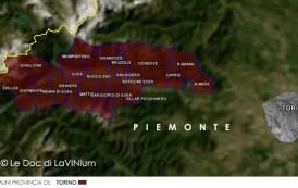 Le Doc del Piemonte: Valsusa