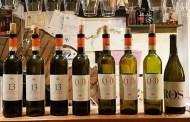 Grandi vini italiani: l'Erbaluce di Caluso 13 Mesi di Favaro alla prova del tempo