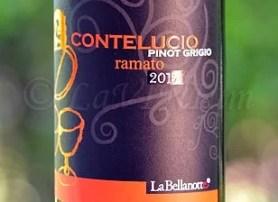 Conte Lucio Pinot Grigio Ramato 2015