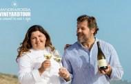 Volete provare l'emozione di vendemmiare davanti al mare? Correte al Mandrarossa Vineyard Tour!