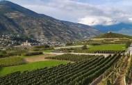 Vallée d'Aoste Pinot Noir 2016 Cave des Onze Communes
