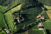 Castello Bonomi presenta l'Erbamat, il nuovo autoctono franciacortino