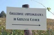 Grinzane Cavour, un museo a cielo aperto