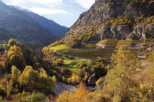vigne estreme in Valle d'Aosta