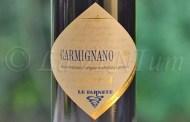 Carmignano Riserva Le Farnete 2008 Tenuta Cantagallo