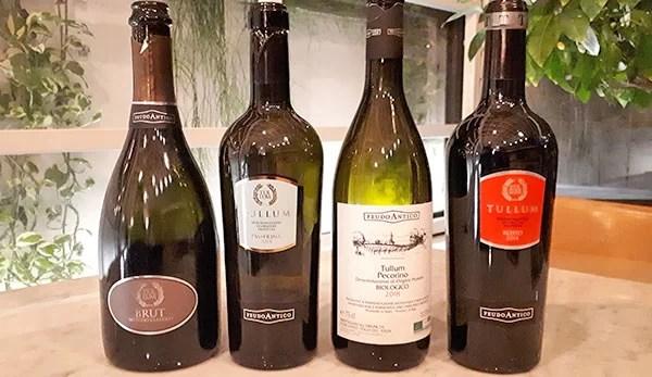 I vini di Feudo Antico