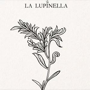 logo La Lupinella