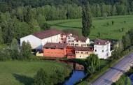 Festeggio anch'io i dieci anni di biodinamica della Musella Winery & Country Relais