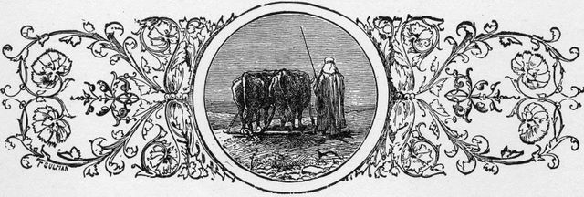 Oxen tilling a field (border)