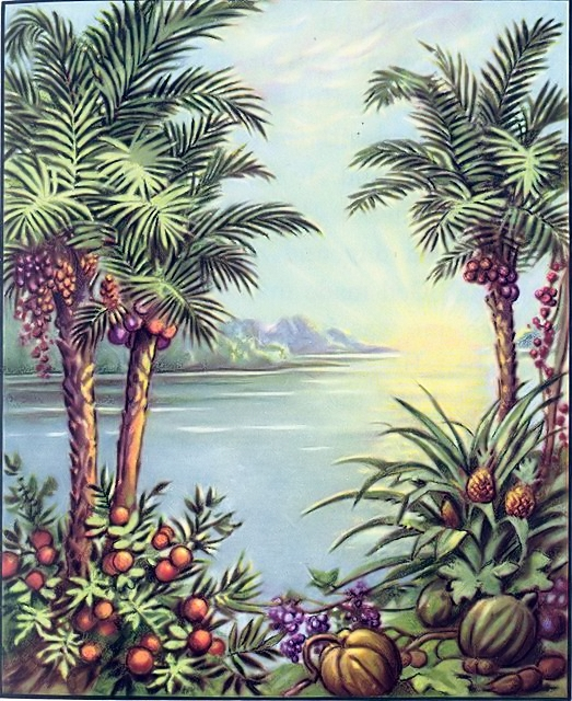 God created the plants Genesis 1:11-12