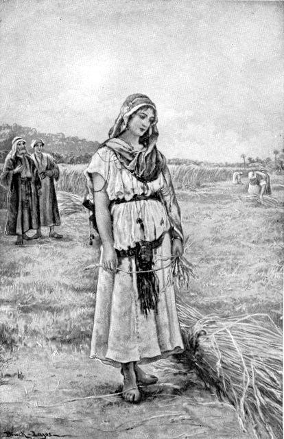 Boaz Sees Ruth Ruth 2:5-6