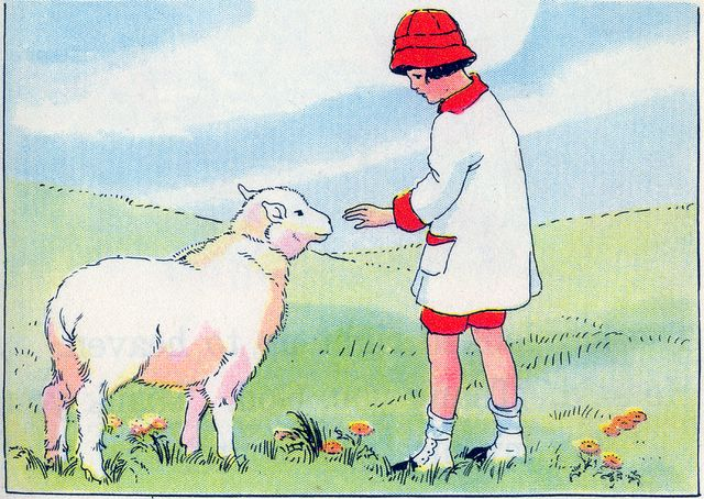 Little boy thanking the sheep for his new coat