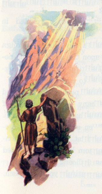 Shepherd on narrow mountain path