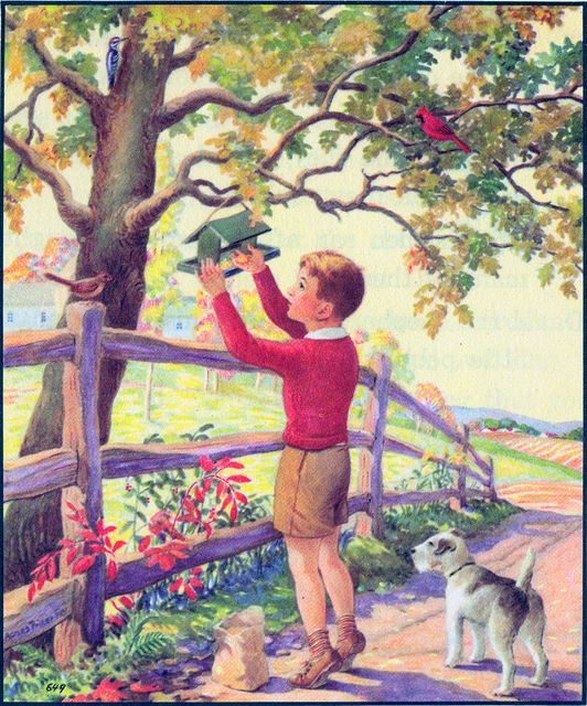 Young boy putting seed in a bird feeder during the fall
