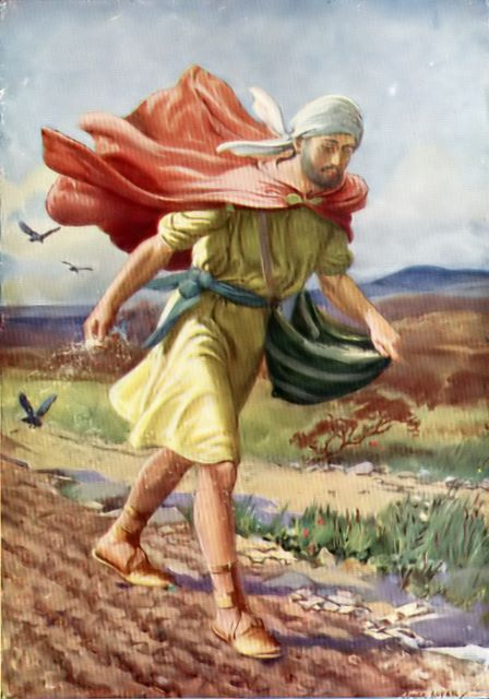 A Sower Went Out Scattering Seed (Luke 8:5)