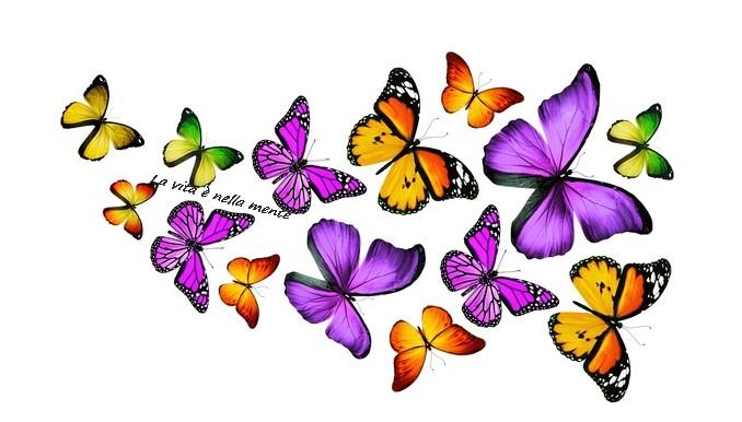 """Test :"""" La Farfalla dei desideri"""""""