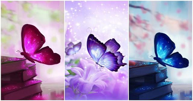 Scegli una farfalla e ricevi un messaggio !