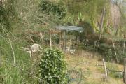 Abusivismo nel Parco dei Castelli Romani