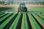 """La Comunità Montana sovvenziona il patentino fitosanitario L'Assessore Francesca Cenci: """"Abbiamo risposto ad un'esigenza del territorio"""""""