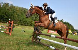 Il Vivaro candidato ad accogliere i mondiali di equitazione del 2022