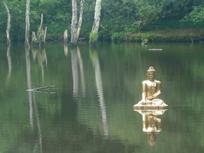 meditazione   lavocedelcarro.it