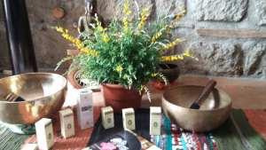 aromaterapia   lavocedelcarro.it
