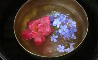 fiori | lavocedelcarro.it