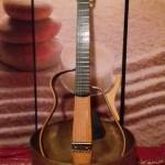 chitarra | lavocedelcarro.it