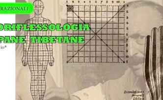 dermoriflessologia | lavocedelcarro.it