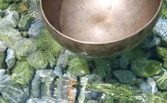 bagno | lavocedelcarro.it
