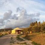 ancestrali | lavocedelcarro.it