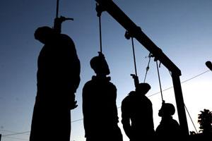 hanging-shiraz-2014-sept-18-3-300