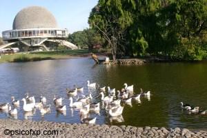 el_planetario_lago_patos