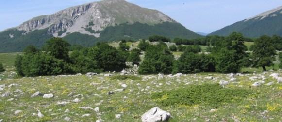L'agricoltura ecocompatibile nel Parco del Pollino