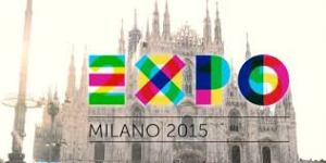 expo 2015 - bis