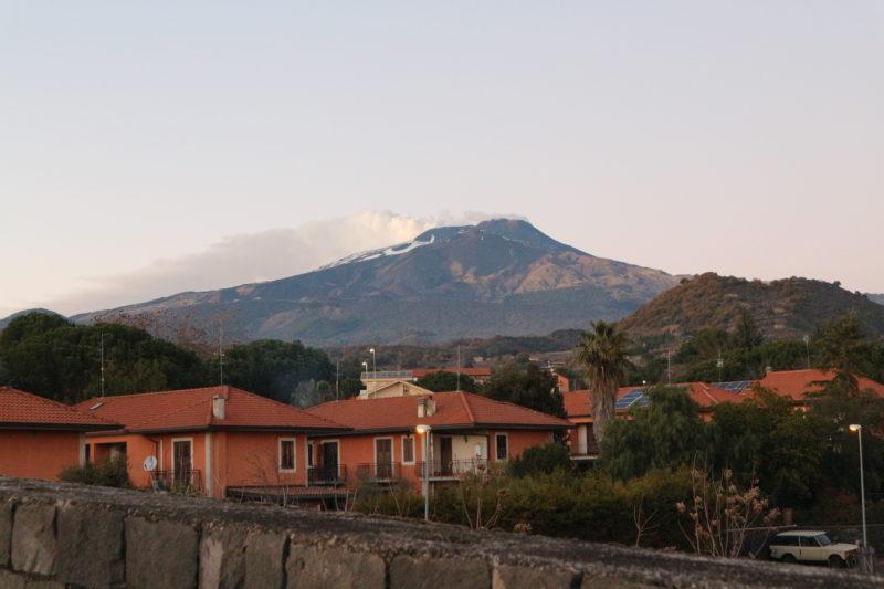 San Giovanni La Punta: collaborazione tra Comune ed Asp veterinaria