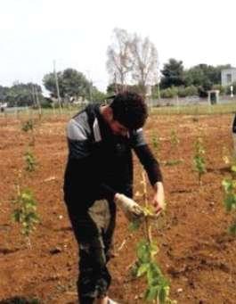 """ProgettiAmo le Riserve Naturali, il progetto, attuato da 30 studenti delle classi quarte dell'Istituto Professionale per l'Agricoltura """"Luigi Einaudi"""" di Manduria"""