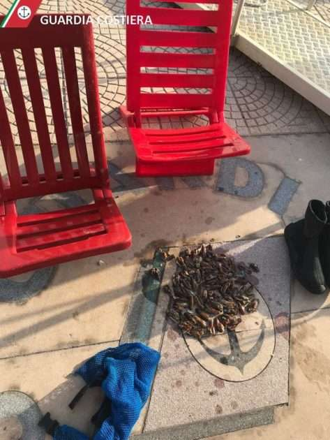 Guardia Costiera sequestra 6 quintali di cozze nere nocive per la salute