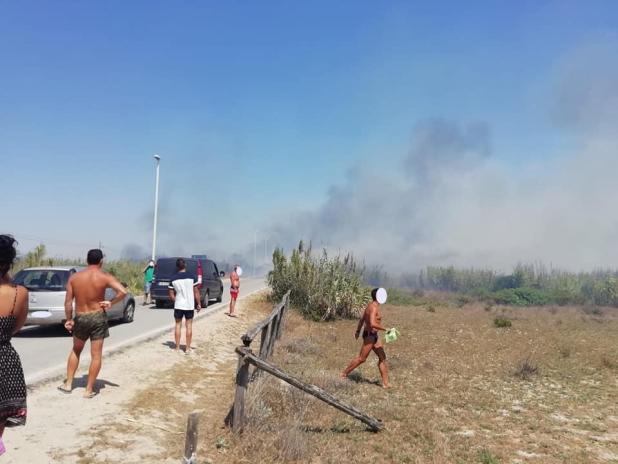 Al fuoco il canneto di Torre Borraco, evacuati centinaia di bagnanti